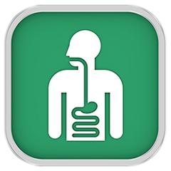 消化器内科について